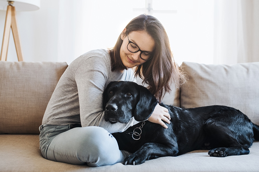 What to Tell Your Pet Sitter Before you Head out of Town